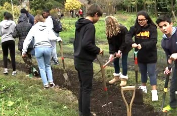 Students working in their school garden.