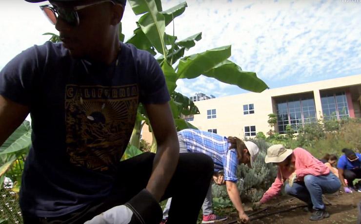 urban farming student crouching down